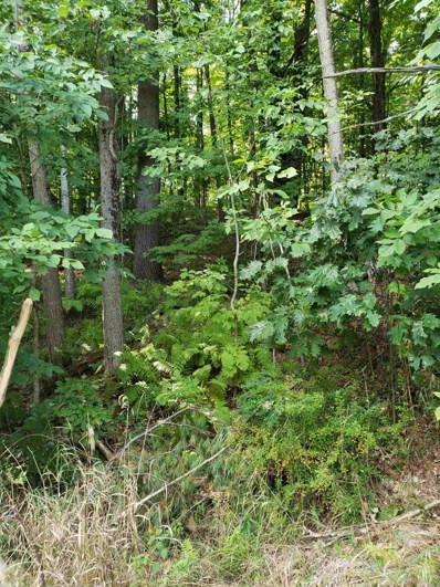 45 Route 16B, Ossipee, NH 03814 - #: 4827872