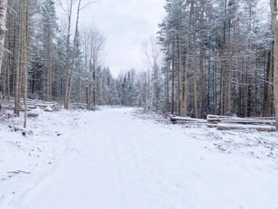 Youngs Road Unit 38, East Haven, VT 05837 - #: 4840067