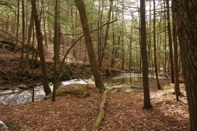 175 Hill Road, Alstead, NH 03602 - #: 4860564