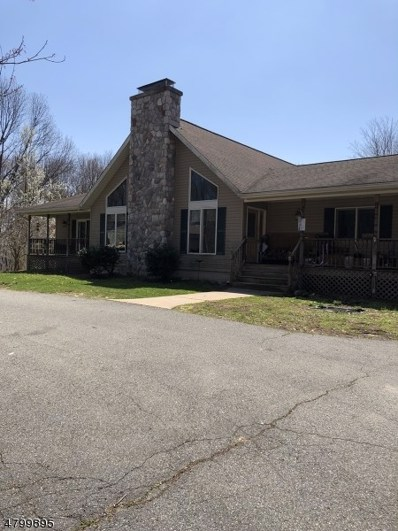 907 Old Foundry Rd, Stillwater Twp., NJ 07860 - #: 3467540