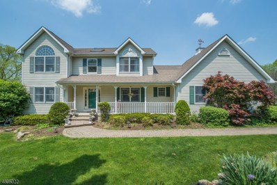18A Barkers Mill Rd, Independence Twp., NJ 07840 - #: 3471762