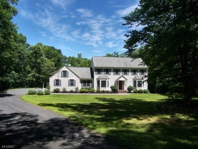 34 Four Corners Rd, Blairstown Twp., NJ 07825 - #: 3481681