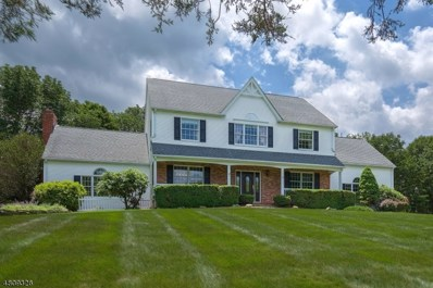 20 Brier Rd, Readington Twp., NJ 08889 - #: 3482655