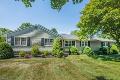 23 Ironia Rd, Chester Twp., NJ 07836 - #: 3486591