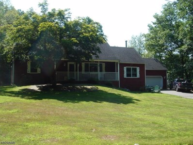 914 Old Tannery Rd, Stillwater Twp., NJ 07860 - #: 3489806