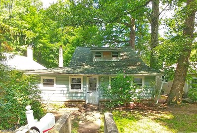 7 Springdale Ter, Mount Olive Twp., NJ 07828 - #: 3495505