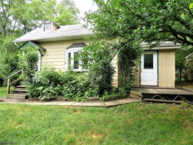 1059 County Route 521, Stillwater Twp., NJ 07860 - #: 3495819