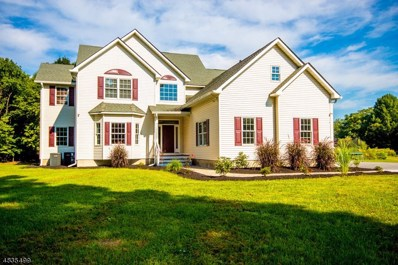 281 Unionville Rd, Wantage Twp., NJ 07461 - #: 3499713