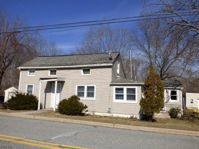 21 Water St, Independence Twp., NJ 07840 - #: 3500334