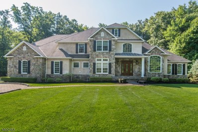 51A Stony Brook Rd, Montville Twp., NJ 07045 - #: 3500499