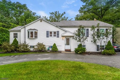 702 Brooklyn Mountain Rd, Hopatcong Boro, NJ 07843 - #: 3501461