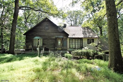 42 Indian Spring Rd, Mount Olive Twp., NJ 07828 - #: 3501706