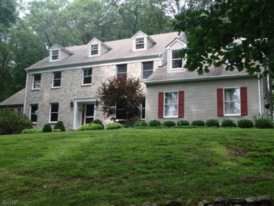 3 N Bridge Dr, Washington Twp., NJ 07853 - #: 3505284