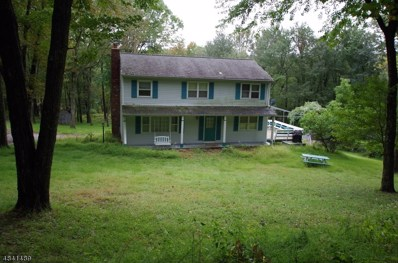 103 Russling Rd, Independence Twp., NJ 07840 - #: 3505296
