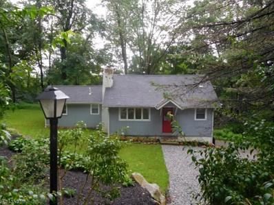 135 Hillside Rd, Vernon Twp., NJ 07422 - #: 3507280