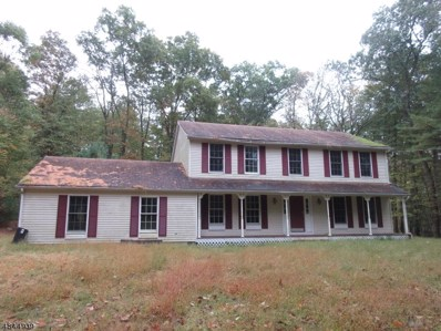 161 New Rd, Montague Twp., NJ 07827 - #: 3509328