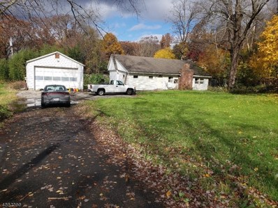 32 Waterloo Rd, Byram Twp., NJ 07874 - #: 3515499