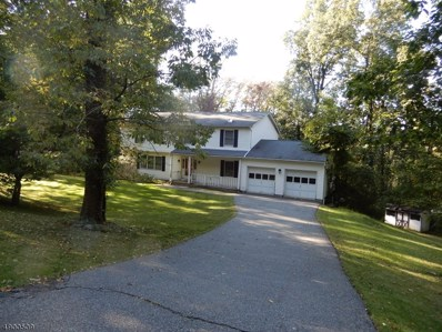 46 Russling Rd, Independence Twp., NJ 07840 - #: 3559560