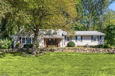 124 Shady Ln, Randolph Twp., NJ 07869 - #: 3588442