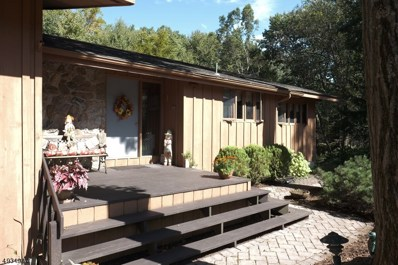 11 Mockingbird Rd, Allamuchy Twp., NJ 07840 - #: 3588633