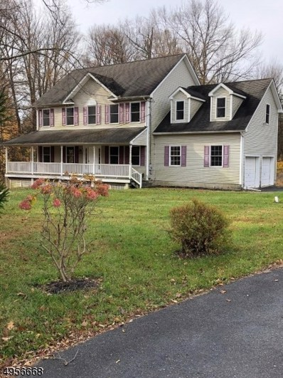 41 Mohican Rd, Blairstown Twp., NJ 07825 - #: 3611128