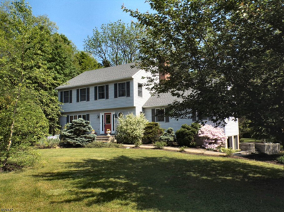 169 Route 94, Blairstown Twp., NJ 07825 - #: 3715093