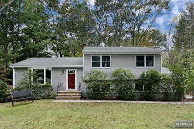 449 Elizabeth Avenue, Ramsey, NJ 07446 - #: 1947211