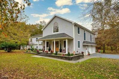 42 Homestead Rd, Woodbine Borough, NJ 08270 - #: 544403