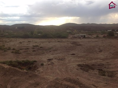 39 Springfield Drive, Las Cruces, NM 88007 - #: 1601992
