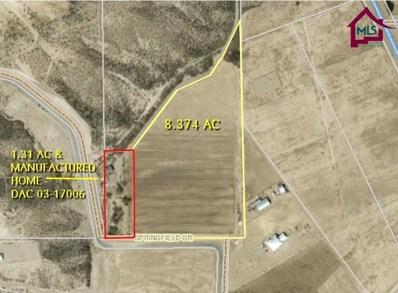 12 Springfield Drive, Las Cruces, NM 88007 - #: 1700156