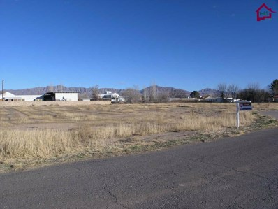10 Calle Pequena, Anthony, NM 88021 - #: 1700254