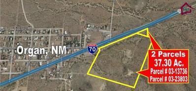 Highway 70, Organ, NM 88052 - #: 1700773