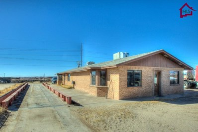 1400 Lechuga Road, Vado, NM 88072 - #: 1703579