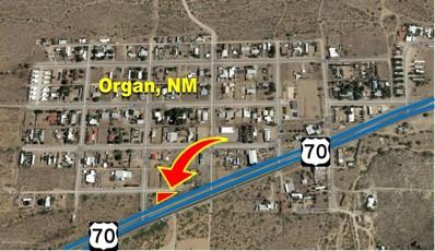 15840 A Street, Organ, NM 88052 - #: 1900028