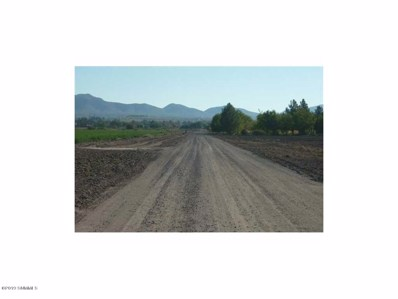 1350 Green Meadow Road, Anthony, NM 88021 - #: 1900319