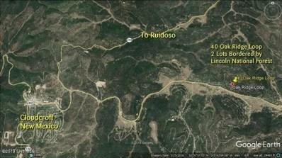 40 Oak Ridge Loop, Cloudcroft, NM 88317 - #: 1902316