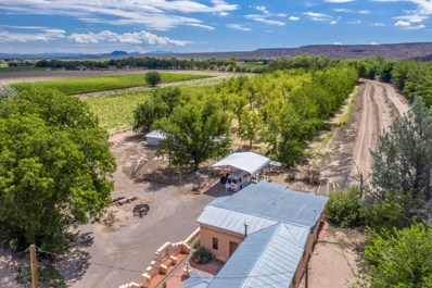 1150 Railroad Road, Hatch, NM 87937 - #: 1902761
