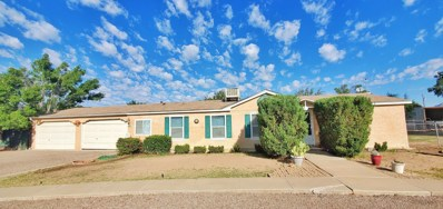 704 W Taylor, Las Cruces, NM 88007 - #: 1902981