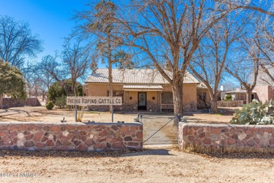 1017 Casad Road, Anthony, NM 88021 - #: 2002927