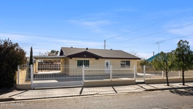 705 Linda Ledesma Road, Anthony, NM 88021 - #: 2100093