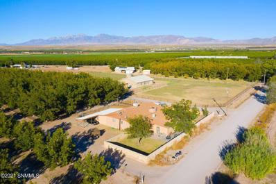 696 Sayles Road, La Mesa, NM 88044 - #: 2103290