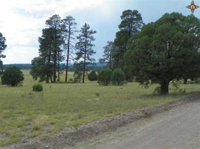 40 Hampton Rd., Reserve, NM 87830 - #: 20154742