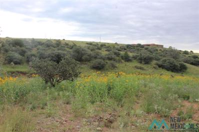 115 Country Road, Silver City, NM 88061 - #: 20164523
