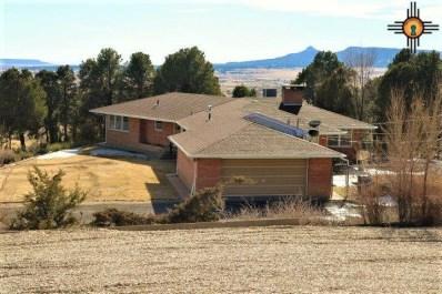 1224 Scenic Rd, Raton, NM 87740 - #: 20170508