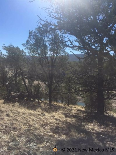 21 Rodeo Drive, Quemado, NM 87824 - #: 20171114