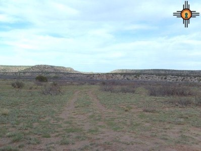 24 S Briarcliff Rd, Trementina, NM 88431 - #: 20172030