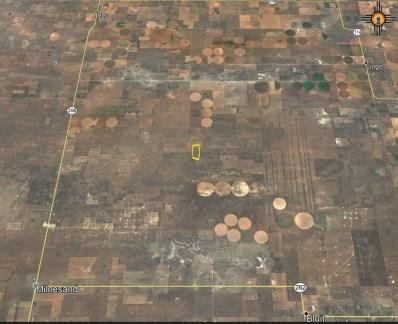 13 Acres South Of Dora, Dora, NM 88115 - #: 20175194