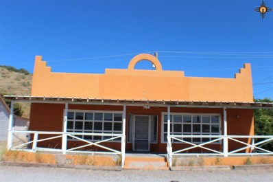 1203-05-07 Tom Foy Blvd, Bayard, NM 88023 - #: 20175319