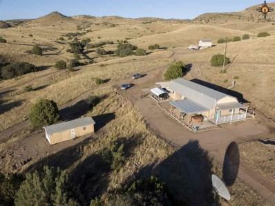 165 Royal John Mine Road, San Lorenzo, NM 88041 - #: 20175422