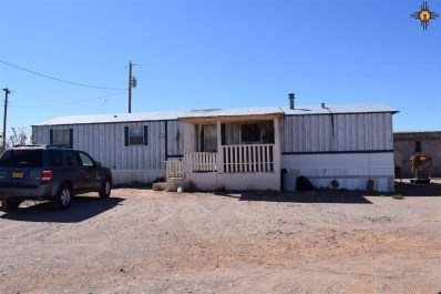 6110 Media Rd Se UNIT Corner >, Deming, NM 88030 - #: 20181512
